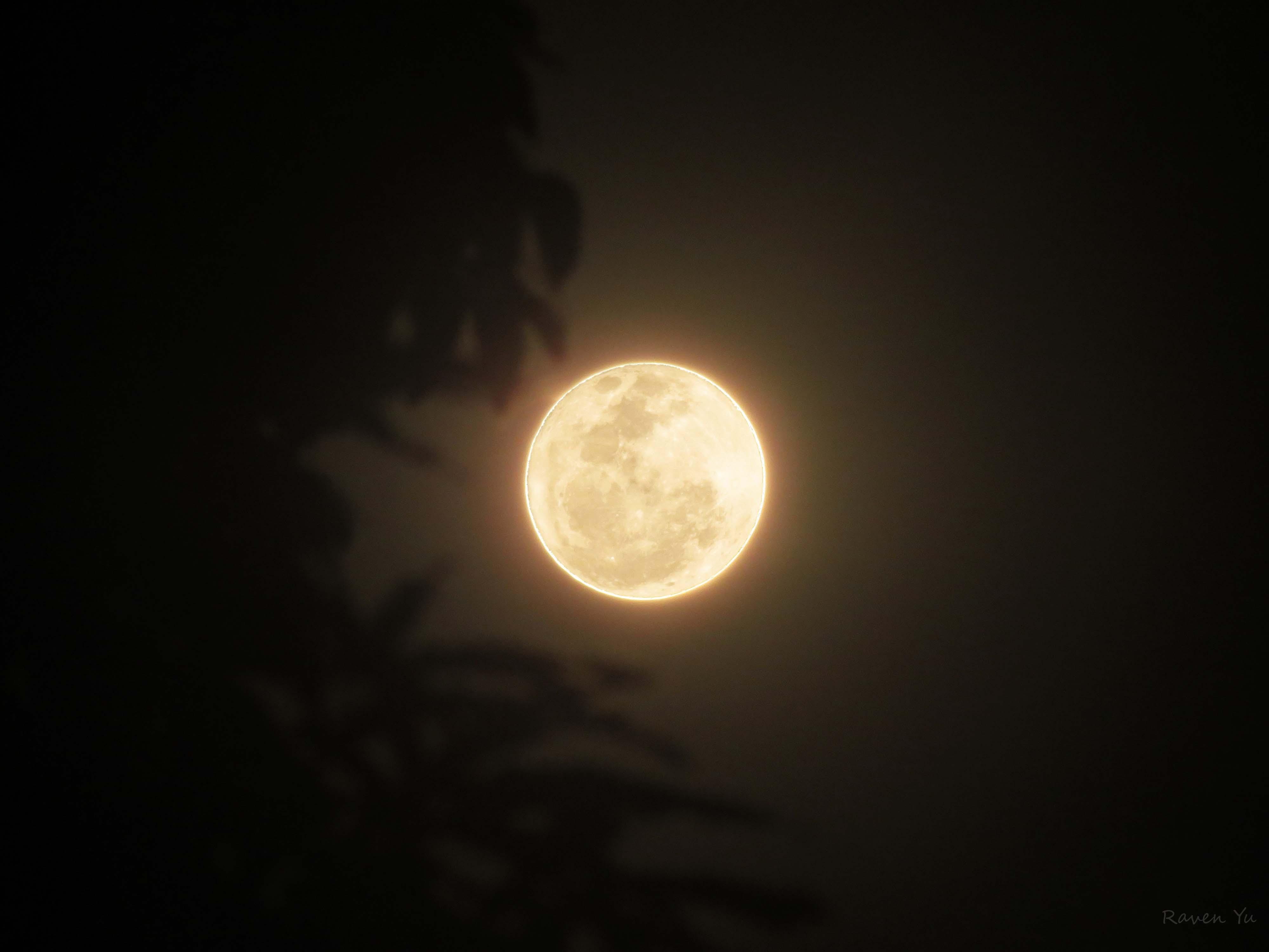 January 2013's Full Wolf Moon » wolf moon