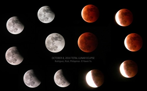 Montage of 12 photos showing the various stages of last night's total lunar eclipse